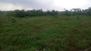 Mixed   Use Land Land for sale By Nekede Police Station,After The Poly Owerri Imo