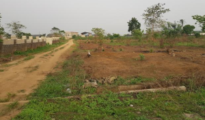 Mixed   Use Land Land for sale by wazobia tv Port Harcourt Rivers