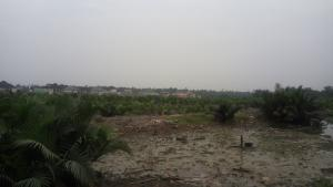 Industrial Land Land for sale Woji/Peter Odili-Akpajo Expressway,  Trans Amadi Port Harcourt Rivers