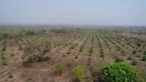 Commercial Land Land for sale Ilorin Kwara