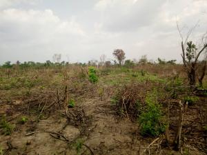 Commercial Land Land for sale  Adetokun  ologuneru ibadan. Ido Oyo