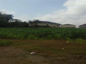 Mixed   Use Land Land for sale Wuye Abuja