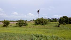 Land for sale Dry Land Epe Road Epe Lagos - 0