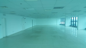 Commercial Property for rent --- Adeola Odeku Victoria Island Lagos