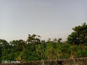 Commercial Land Land for sale Ijede Ikorodu Lagos