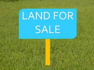Land for sale norther foreshore estate chevron drive lekki  Lekki Lekki Lagos - 0