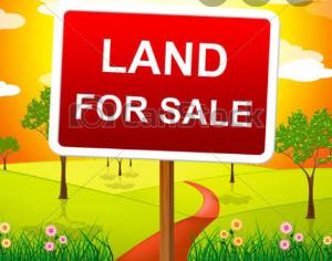 Mixed   Use Land Land for sale ADEBOLA STREET  Adeniran Ogunsanya Surulere Lagos
