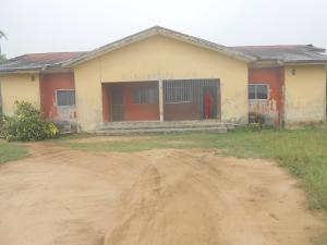 3 bedroom Semi Detached Bungalow House for rent UYO Uyo Akwa Ibom