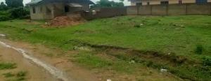 Mixed   Use Land Land for sale Odofin Amuwo Odofin Amuwo Odofin Lagos