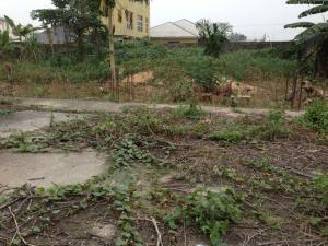 Land for sale Rumualogu road, opposite university of Port Harcourt Choba Port Harcourt Rivers - 0