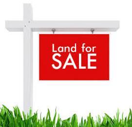 Commercial Land Land for rent Alasia Off Lekki-Epe Expressway Ajah Lagos