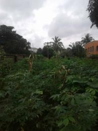 Mixed   Use Land Land for sale Igweze street kwata  Awka South Anambra