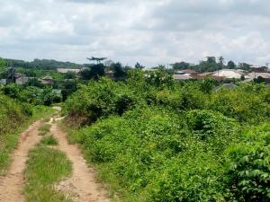 Land for sale Asungboro village off Iseyin Abeokuta  Expressway, Iseyin LG, Oyo state, 30 minutes  Drive from the road Iseyin Oyo