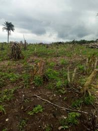 Mixed   Use Land Land for sale Atan-Agbara road Agbara Agbara-Igbesa Ogun