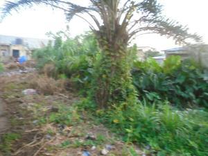 Land for sale Iyana isashi Ojo Ojo Lagos