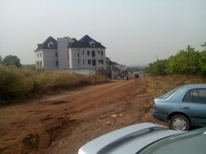 Land for sale Undeveloped plot Asokoro Abuja
