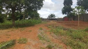 Mixed   Use Land Land for sale 30.42 Hectares of Mixed Used (Multipurpose) Land used, Plot 3992 - Apo Abuja Apo Abuja