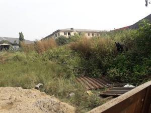 Residential Land Land for sale monestry road, behind shoprite Sangotedo Ajah Lagos