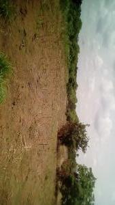 Industrial Land Land