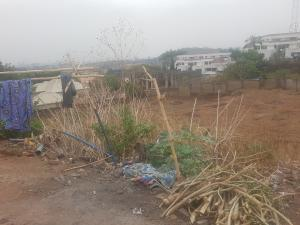 Land for sale Asokoro Asokoro Abuja