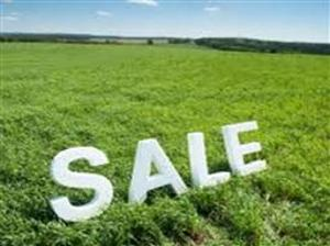 Land for sale Rumuekini Farm, off New Airport Road, Port Harcourt Obia-Akpor Port Harcourt Rivers - 0