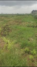 Land for sale along badagry expressway by fin niger Amuwo Odofin Amuwo Odofin Lagos - 0