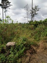 Land for sale effurun-sapele road effurun beside magson filling station Delta - 1