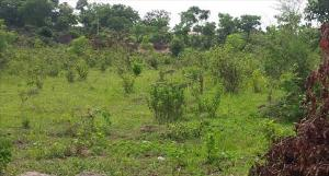 Mixed   Use Land Land for sale Agege Motor Rd Mushin Mushin Lagos