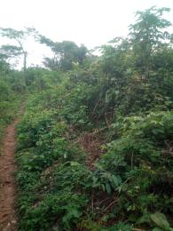 Residential Land Land for sale -  Moniya Ibadan Oyo