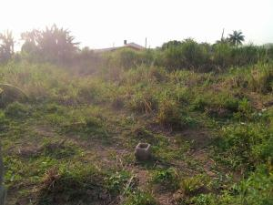 Mixed   Use Land Land for sale Opposite NNPC bus stop Ejigbo Ejigbo Lagos