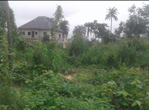 Residential Land Land for sale Power of Salvation Ministries Road Igwurta-Ali Port Harcourt Rivers