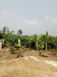 Residential Land Land for sale Ogbogoro Obia-Akpor Port Harcourt Rivers