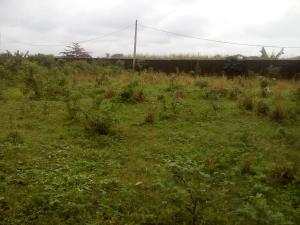 Land for sale Itele Road Ado Odo/Ota Ogun