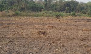 Land for sale Eleyele Round-about Eleyele Ibadan Oyo