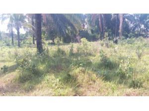Mixed   Use Land Land for sale Emene, Behind PRODA Staff Quarters  Enugu Enugu