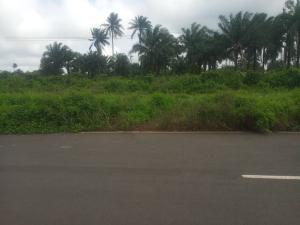 Commercial Land Land for sale Ali-Ezi Omuogboro Ozuha Ikwerre Rivers