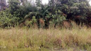 Land for sale Ikate Lagos - 1