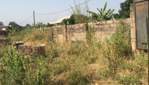 Mixed   Use Land Land for sale ESUT Enugu Enugu