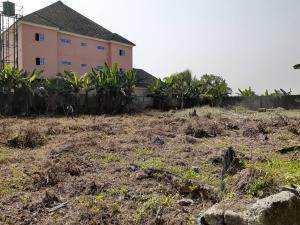 Mixed   Use Land Land for sale Ughelli - Patani Road Ughelli North Delta