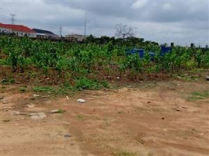 Mixed   Use Land Land for sale Katampe Ext Abuja