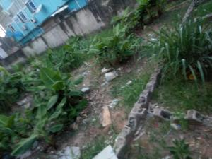 Residential Land Land for sale Lily Estate, Amuwo Odofin Amuwo Odofin Amuwo Odofin Lagos