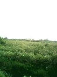 Land for sale Water Front Lekki Phase 1 Lekki Lagos - 0