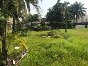 Commercial Land Land for rent Alfred Rewane (Kingsway Road) Old Ikoyi Ikoyi Lagos
