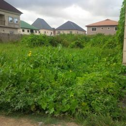 Land for sale Divine Estate Apple junction Amuwo Odofin Lagos