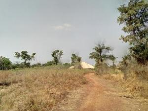 Residential Land Land for sale 4.39 Hectares Residential Land in Katampe Main Katampe Main Abuja