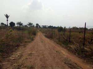 Mixed   Use Land Land for sale 4.71 Hectares Guzape / Asokoro  (Close to INEC Commissioners Quarters) Guzape Abuja