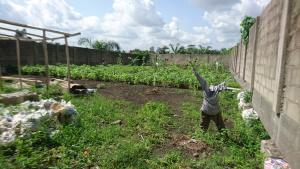 Mixed   Use Land Land for sale Adeniyi Jones Ikeja Lagos