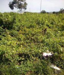 Land for rent Gwagwalada, Abuja, Abuja Galadinmawa Abuja