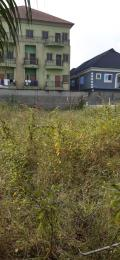Commercial Land Land for sale ikota complex Ikota Lekki Lagos