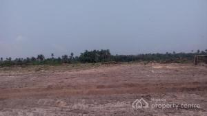 Mixed   Use Land Land for sale   Origanrigan/oshoroko, Beside Dangote Refinery In Free Trade Zone Are, Ibeju Lekki, Lagos     Origanrigan Ibeju-Lekki Lagos